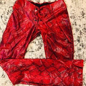 Pants - Wet Look Snake Print Lace Up Pants Reptile KIANA